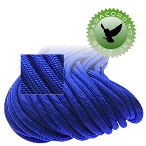 Bilde av Electric Blue - Paramax